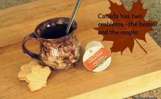 ECS Maple Cinnamon French Toast Decaf K Cup from ECS Coffee