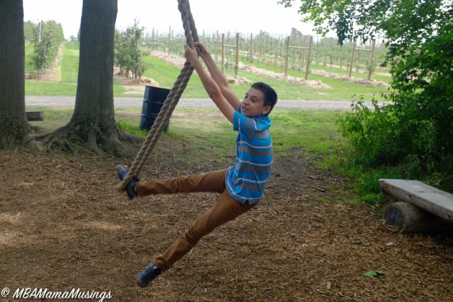 Rope Swing at Chudleigh's Apple Farm