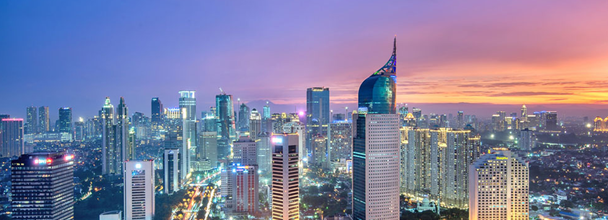 Case Study:  On Assignment in Jakarta, Indonesia