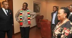 Chiwenga and Mai Mnangagwa
