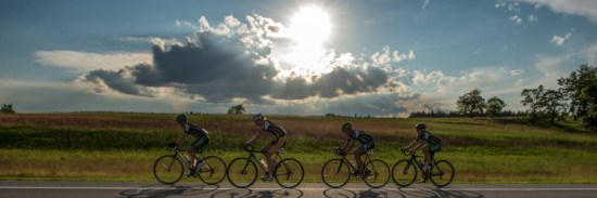 Website road team