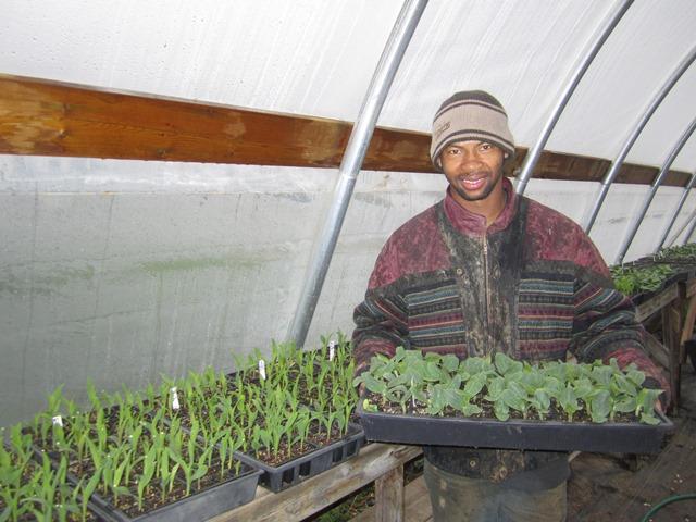 P&E Thanbang greenhouse.web