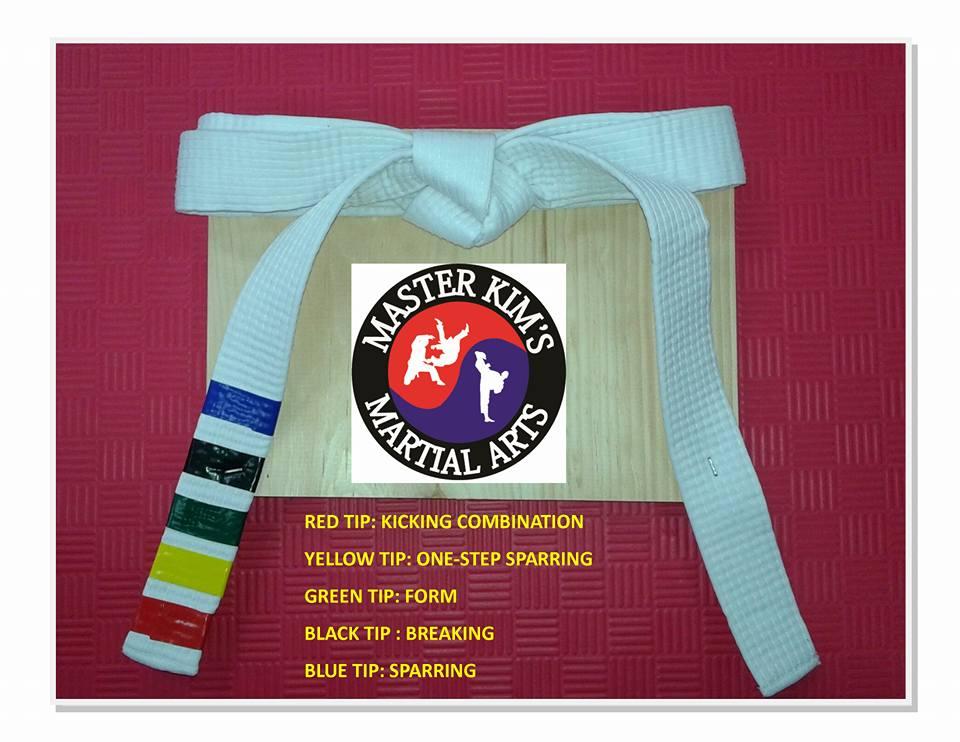 Belt tips