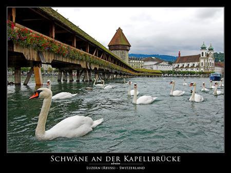 kapellbruecke_schweiz_luzern_europa.jpg