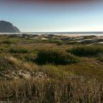 800px-Morro_Strand_State_Beach_(1)