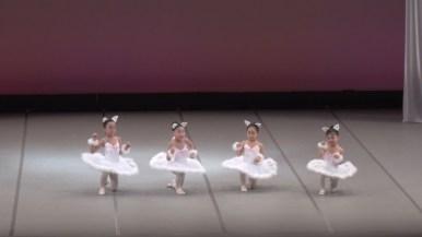 第II部「白い猫の踊り」/「眠れる森の美女」第3幕より