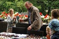 Druskininkai; 2016 vasaros šachmatai