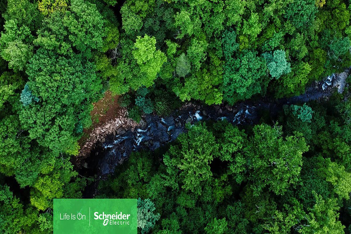 Schneider Electric Global Biyoçeşitlilik Kaybıyla Nasıl Mücadele Edeceğini Açıkladı
