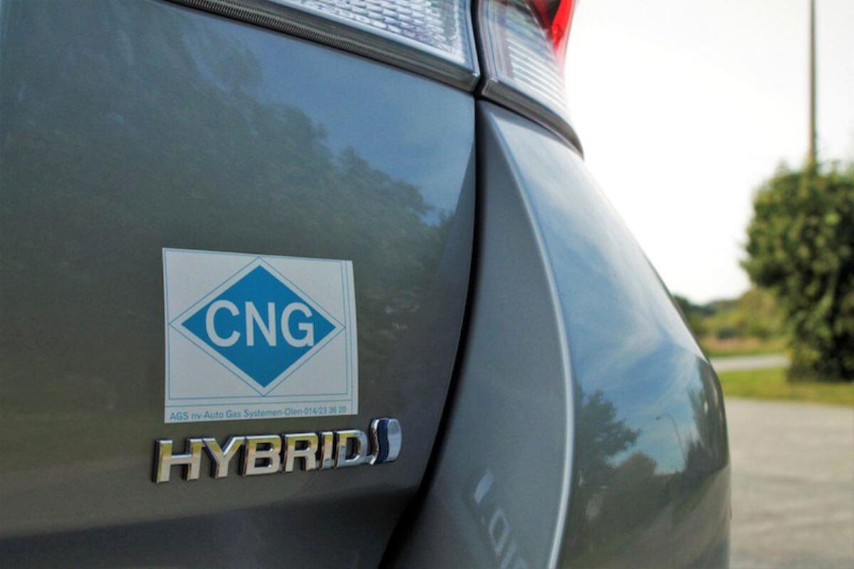 Elektrikli Araçlar Çare mi? Yeni Bir Sorun mu?