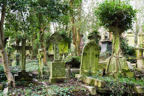 Verde - Cimitero di Highgate - Londra