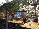 Outdoor bar with Street Art