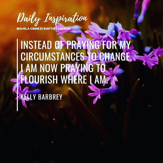 Instead of praying for my circumstances to change, I am now praying to flourish …