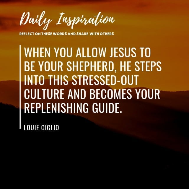 When you allow Jesus to be your shepherd, He steps into this stressed-out cultur…