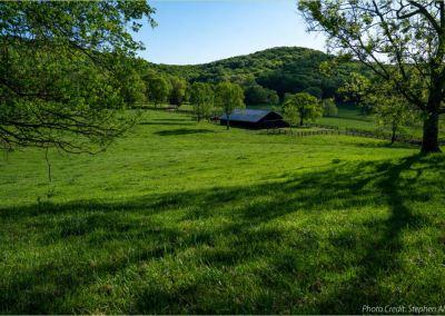 Williamson 2040: Williamson County, TN
