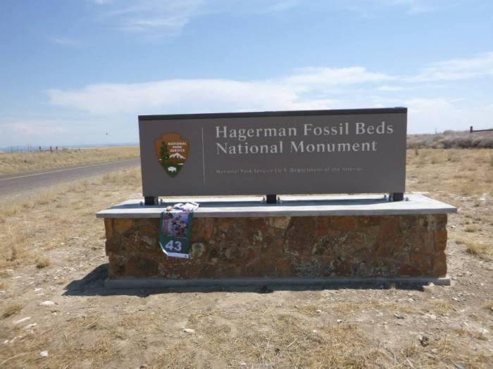 Hagerman Fossil
