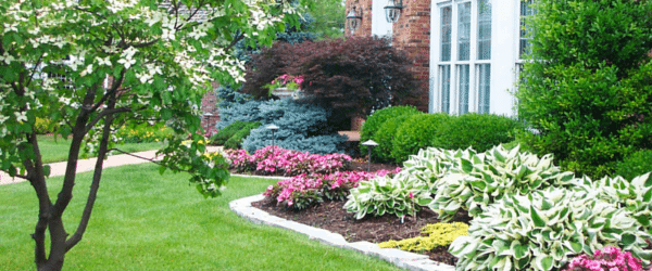 Summer Landscaping Rules to