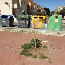MC propone actuaciones para rescatar los barrios de San Félix y la Urbanización Mediterráneo