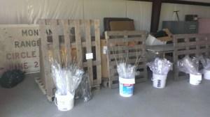 currants, raspberries, silver maples & native cottonwood