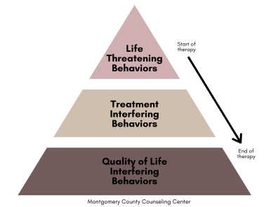 hierarchy of treatment targets or priorities