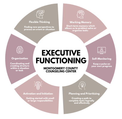 Infographic showing the several components of executive functioning coaching