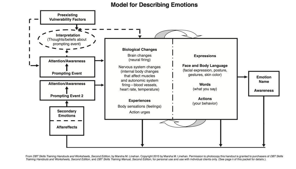 DBT model of emotions