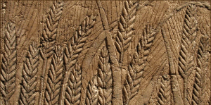 egyptian-wall-carving-of wheat