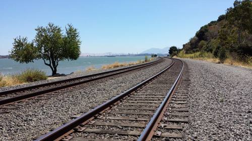 Railroad tracks at the edge of the Carquinez Strait