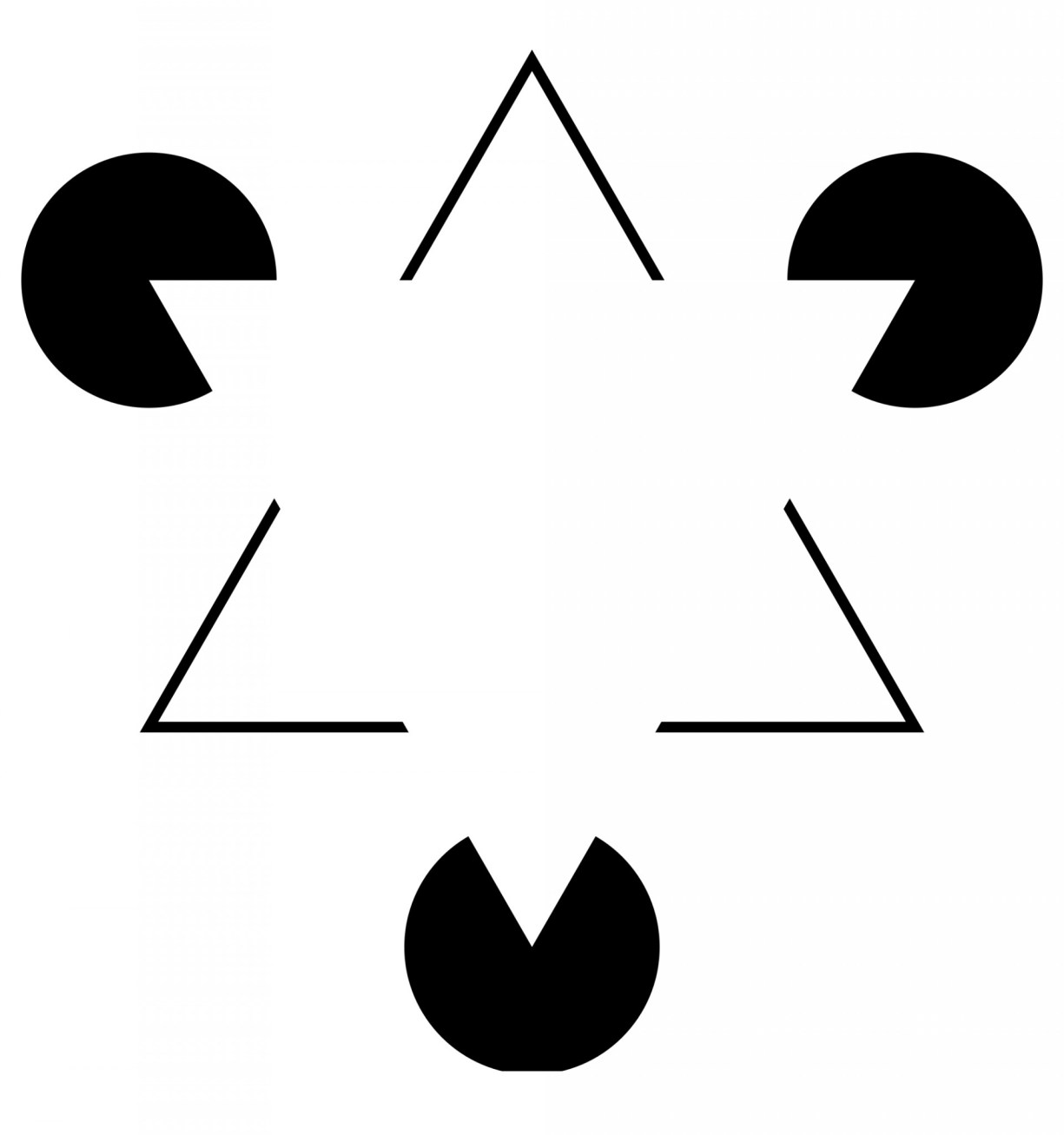 Photo 3: Optical illusions have been designed to trick the brain's visual system. (wikimedia.org)