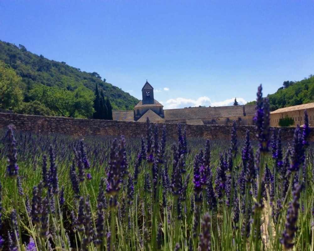 Abbaye de Sénanques près de Gordes, en Provence