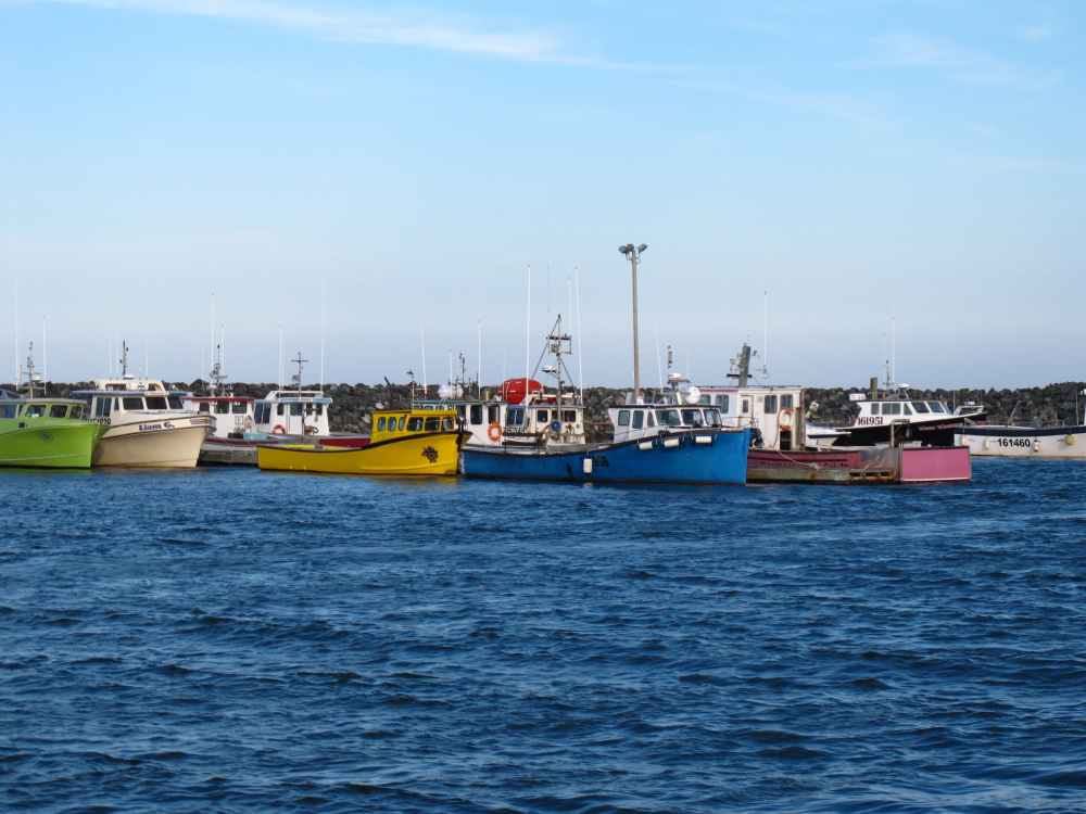 Ile Miscou bateau