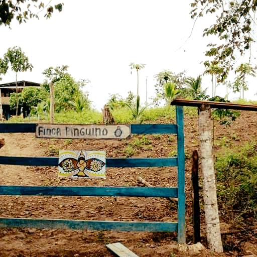 FincaPinguino_signe