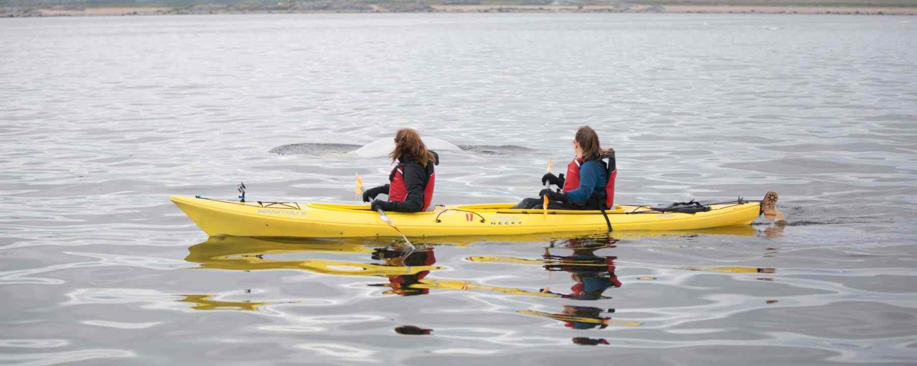 Faire du kayak sur la rivière Churchill au Manitoba