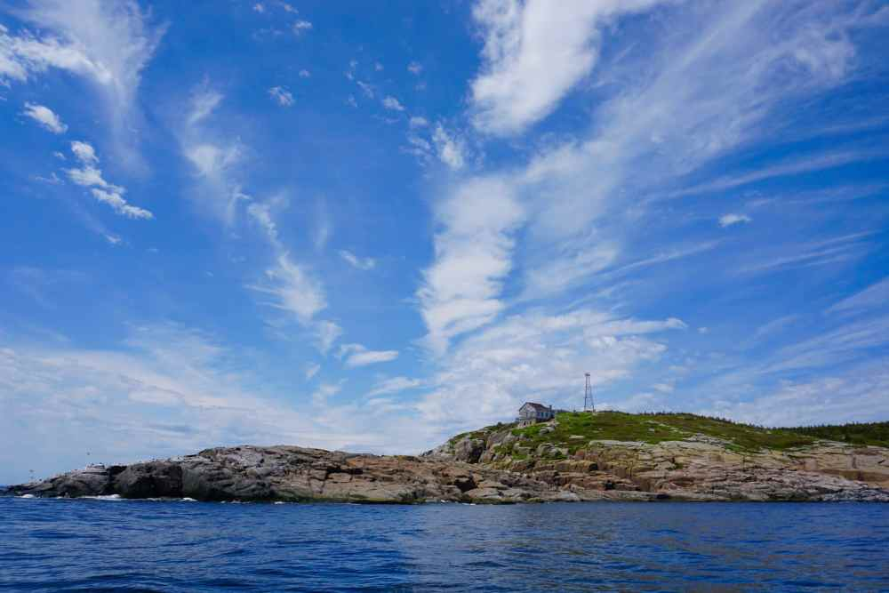 Île du Corossol de Sept-Îles