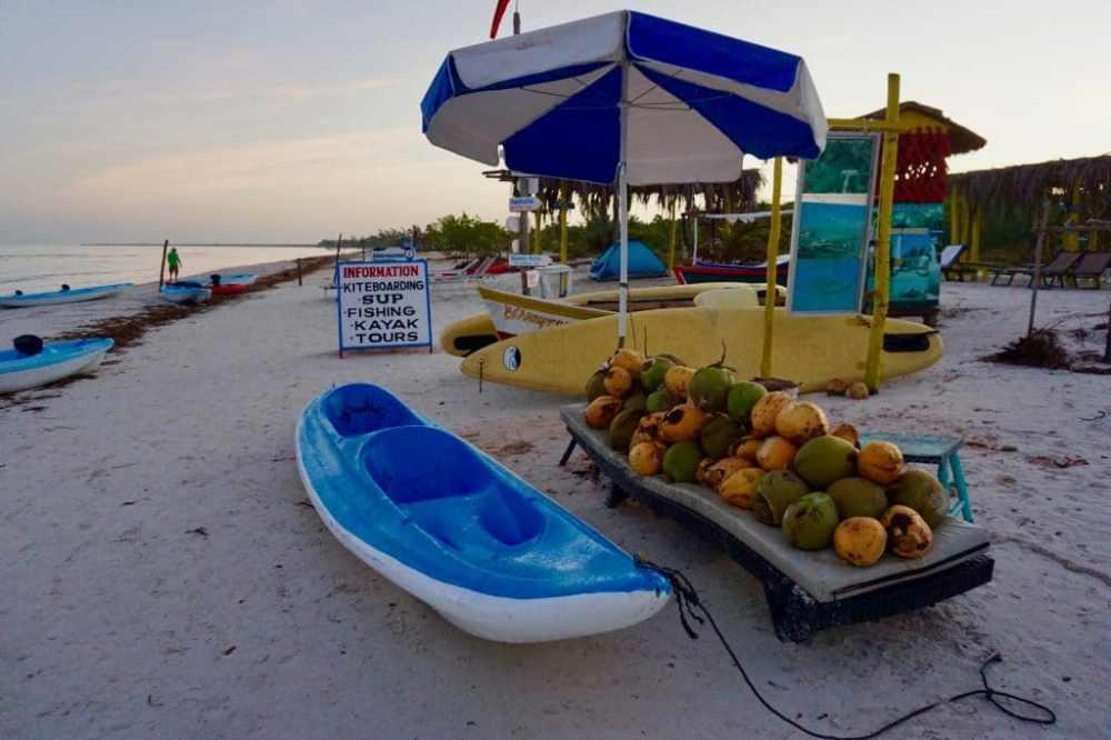 Plage avec Kayak et pancarte pour annoncer les activités vendues :SUP, pêche, kayak, tours sous un parasol avec noix de coco. Isla Holbox Mexique