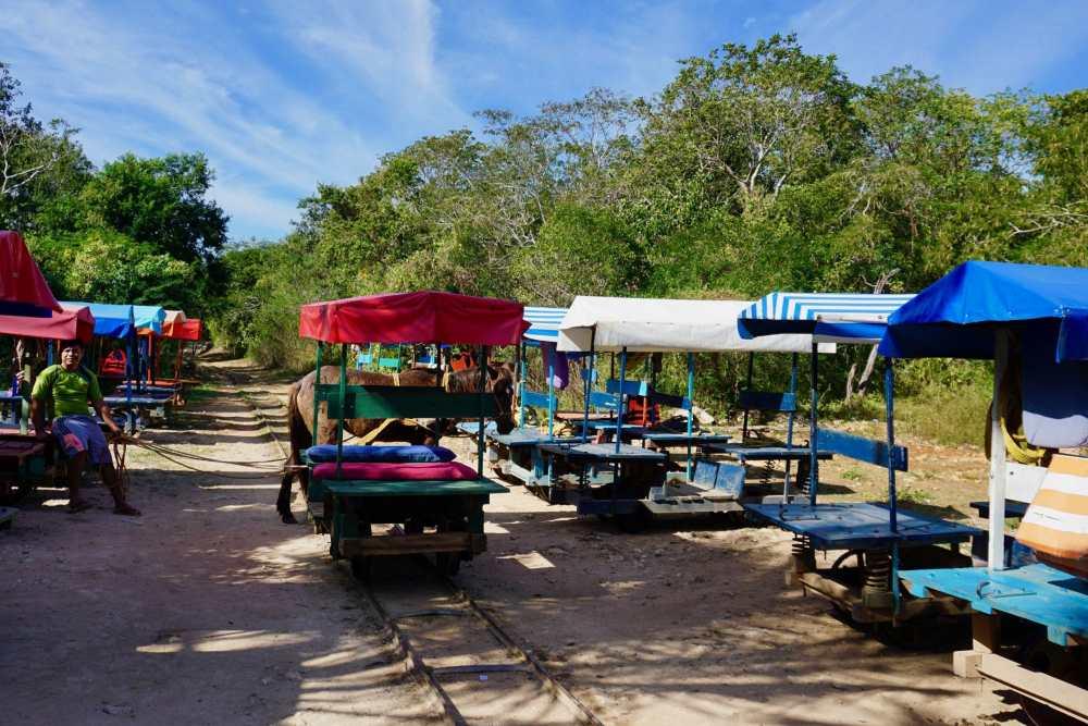 Le moyen de transport pour visiter les 3 cenotes de Cuzama: Une charrette tirée par une mule