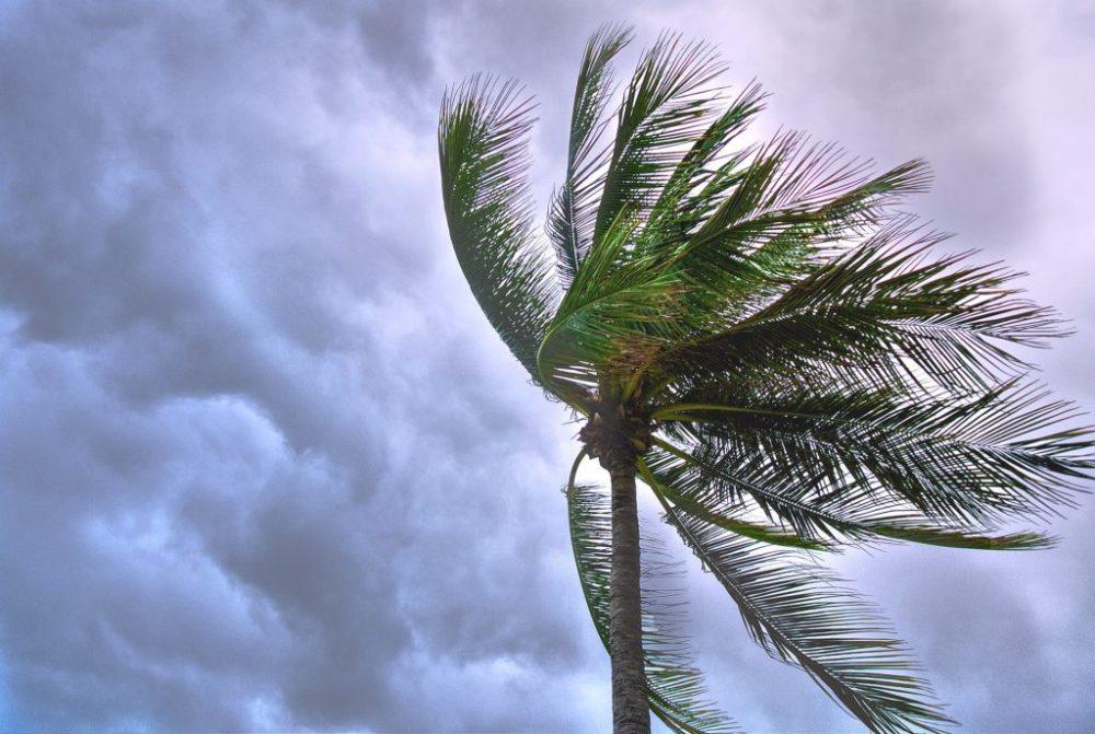 Voyager hors saison malgré les tempêtes