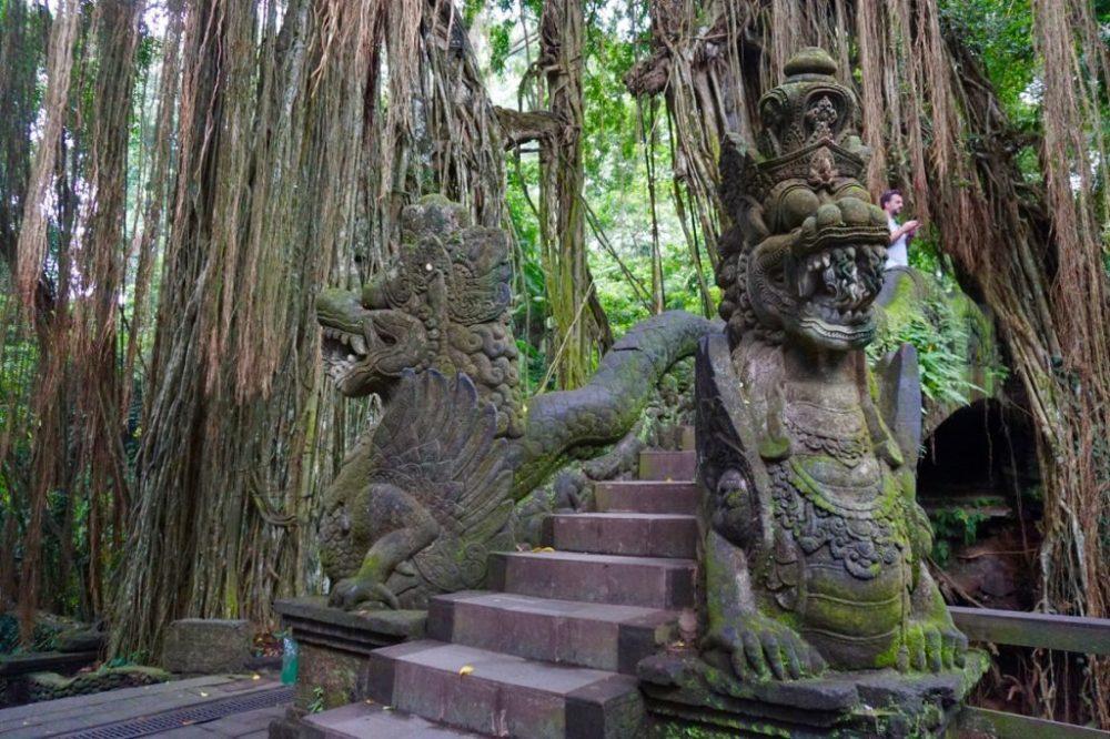 Dans la forêt des singes à Bali, Ubud