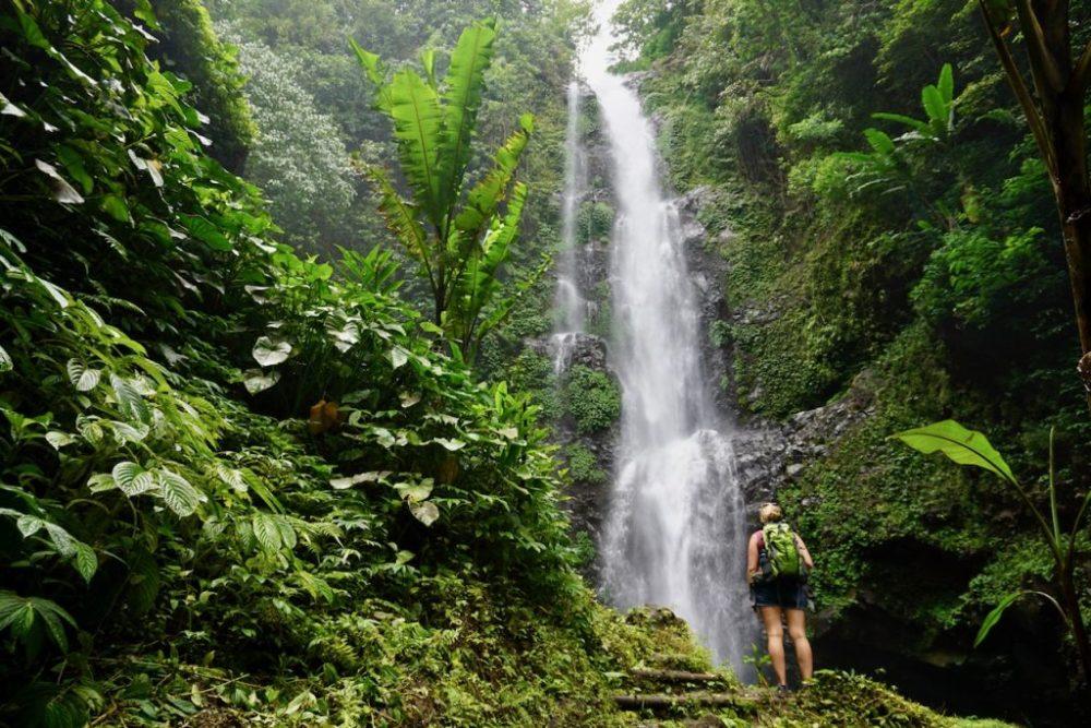 Joannie entrain d'admirer l'une des chutes accessibles à pied depuis le village de Munduk, Bali, Indonésie
