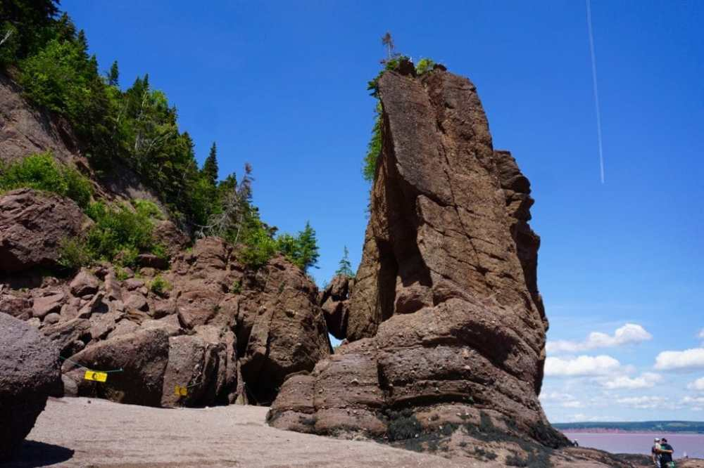 Hopewell Rocks fond marin