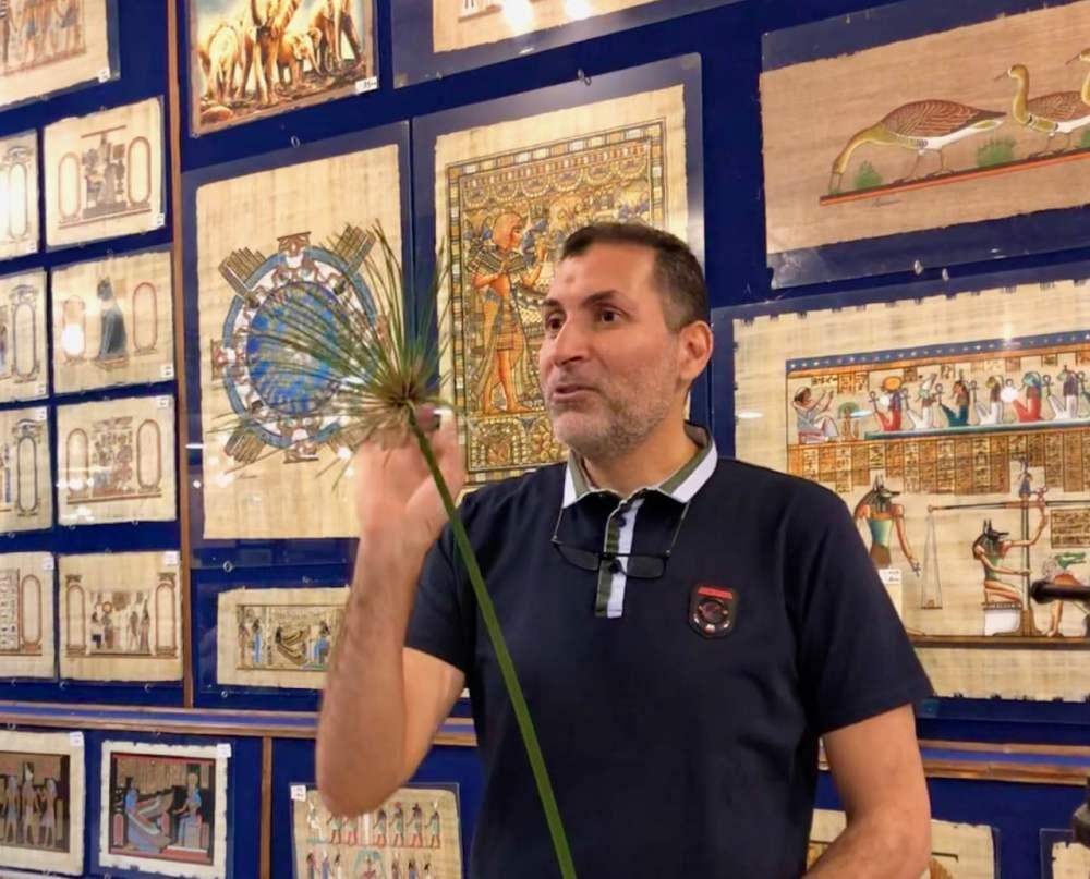 Au musée du Papyrus au Caire, on explique la transformation de la plante en papier