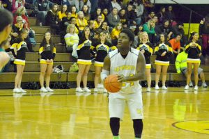 The Mineral County High School boys basketball team opened its season performing as expected at the Serpents