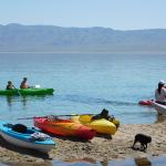 Walker Lake Day brings good crowd