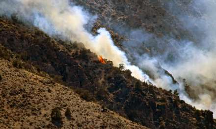 Weapons Training Suspected Cause of Brush Fire on Mt. Grant