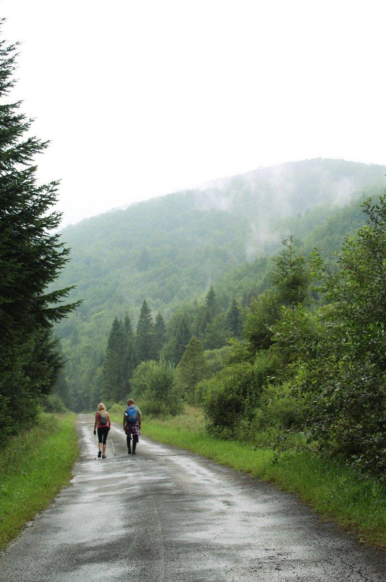 Bieszczady- hiking trail Cisna