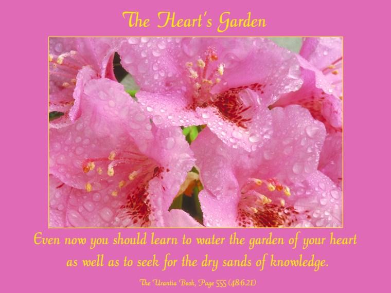 The_Hearts_Garden_1024