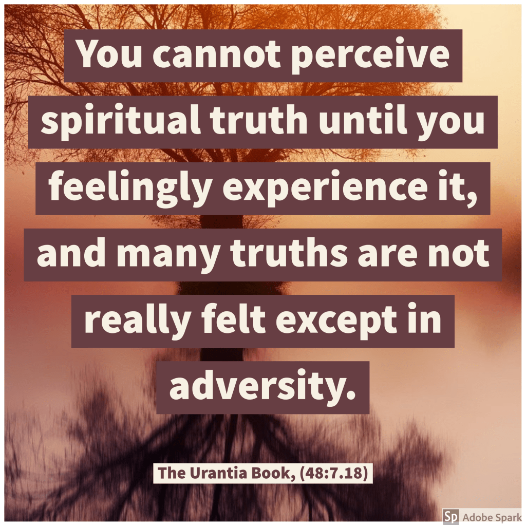 You cannot perceive spiritual truth until you feelingly experience it, and many truths are not really felt except in adversity.