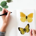 notebook with butterflies