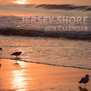 2018 jersey shore calendar by bill mckim