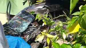 St Andrew Man Killed in Motor Vehicle Accident, Female Injured