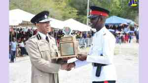Reduction in Crime Attributed to Effective Policing Strategies
